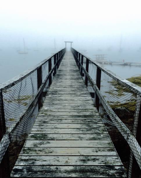 Peering Into Fog, West Boothbay
