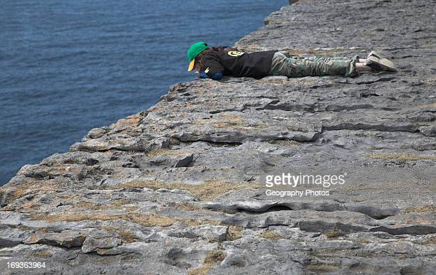 Peering over edge of sheer cliff Dun Aengus fort Inishmore Aran Islands County Clare Ireland
