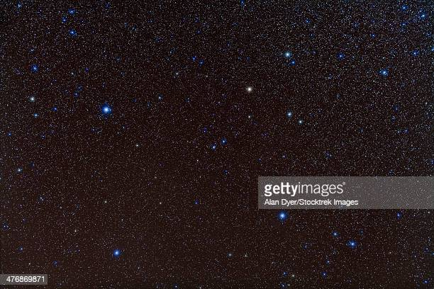 Pegasus constellation in the northern sky.