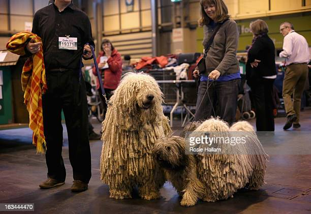 Peggy and Furge Hungarian Puli and Agatha a Hungarian Komondor with their owners Isobel and Kim Sears get ready to show during the final day at...