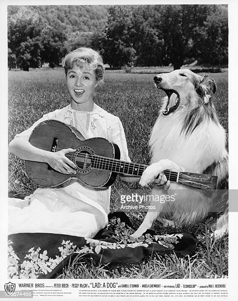 Peggy McCay strumming the guitar next to Lad in a scene from the film 'Lad A Dog' 1962