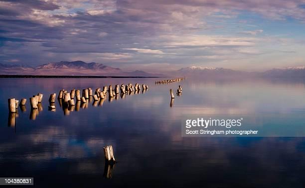 pegs, great salt lake, utah - great salt lake stock pictures, royalty-free photos & images