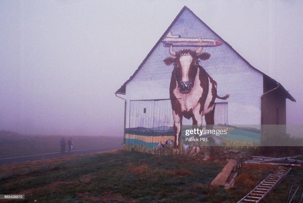 Peinture Murale Représentant Une Vache Surmontée D Un