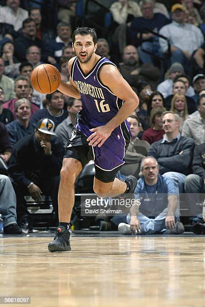 Peja Stojakovic of the Sacramento Kings dribbles against the Minnesota Timberwolves during the game at Target Center on December 13 2005 in...