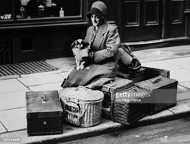 Pekinese Dog Show In London, Woman And Her Dog Sitting Amongst Dog Baskets At London In United Kingdom