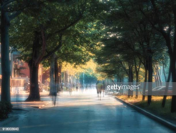Peking University Afternoon