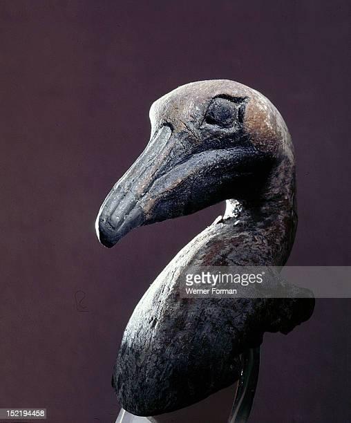 Pelican or an albatross ceremonial effigy USA Calusa Key Dwellers 800 1400AD Key Marco Florida