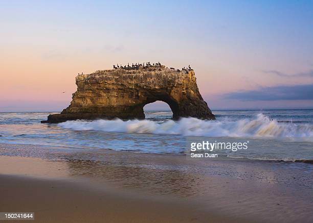 Pelicans on Natural Bridge