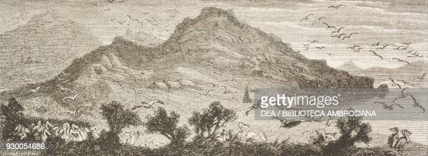 Pelicans on the shores of Utah Lake, United States of America, drawing by Francois-Fortune Ferogio from a sketch by Stansbury, from The City of the...
