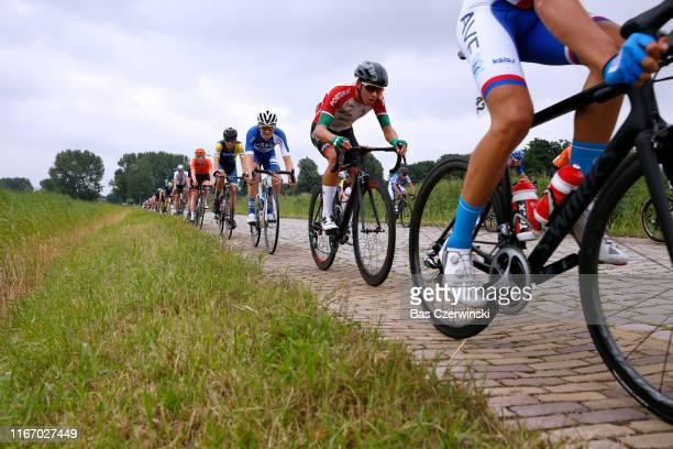 Peloton / Cobblestones / during the 25th UEC Road European Championships 2019 Junior Men's Road Race a 115km race from Alkmaar to Alkmaar /...