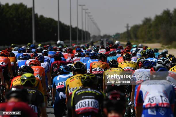 Peloton / Detail view / during the 6th UAE Tour 2020, Stage 3 a 184km stage from Al Qudra Cycle Track to Jebel Hafeet 1032m / #UCIWT / #UAETour / on...