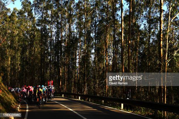 Peloton / Forest / Autumn / Landscape / during the 75th Tour of Spain 2020, Stage 10 a 185km stage from Castro Urdiales to Suances / @lavuelta /...