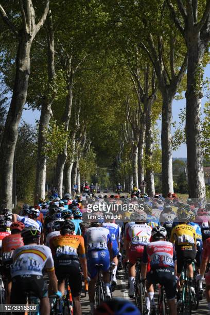 Peloton / Forest / Landscape / during 107th Tour de France 2020, Stage 19 a 166,5km stage from Bourg en Bresse to Champagnole 547m / #TDF2020 /...