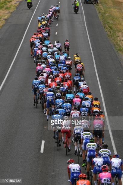 Peloton / Landscape / during the 22nd Santos Tour Down Under 2020, Stage 6 a 151,5km stage from McLaren Vale to Willunga Hill 374m / TDU /...