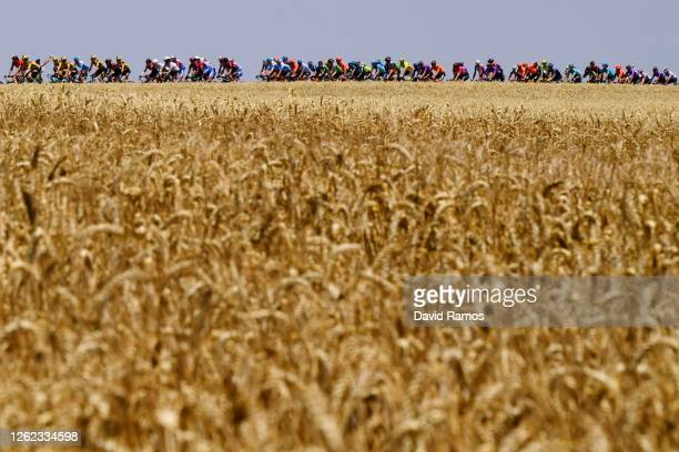 Peloton / Landscape / during the 42nd Vuelta a Burgos 2020, Stage 2 a 168km stage from Castrojeriz to Villadiego / #VueltaBurgos / on July 29, 2020...