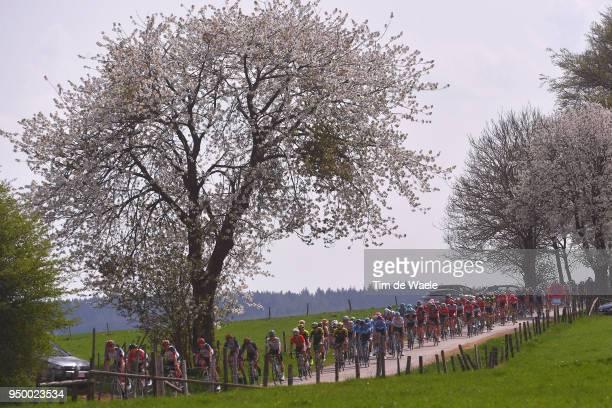 Peloton / Landscape / during the104th LiegeBastogneLiege 2018 a 2585km race from Liege to LiegeAns on April 22 2018 in Liege Belgium