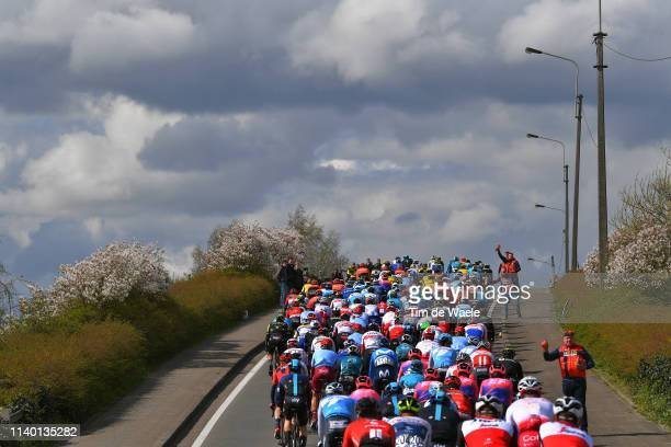 Peloton / Landscape / Feed Zone / Soigneur / during the 74th Dwars door Vlaanderen 2019 a 182,8km race from Roeselare to Waregem / @DwarsdrVlaander /...
