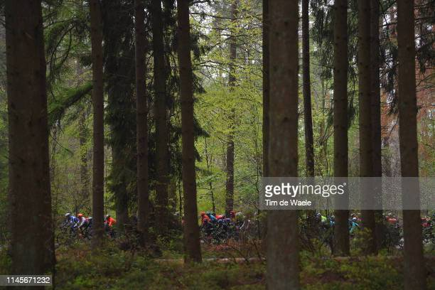 Peloton / Landscape / Forest / Woods / during the 105th Liege - Bastogne - Liege 2019 a 256km race from Liege to Liege / @LiegeBastogneL / #LBL / on...