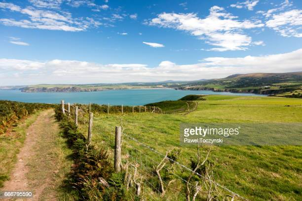 pembrokeshire coast path on the ynys dinas peninsula, wales - south wales stock pictures, royalty-free photos & images