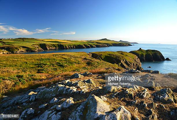 pembrokeshire coast path - st davids stock pictures, royalty-free photos & images