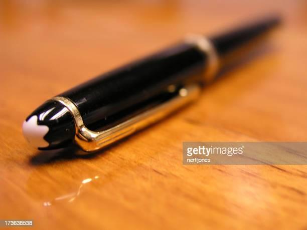 Un stylo au repos