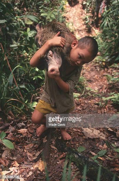 A Penan boy brings home the head of a bearded pig Lamin Sape Sarawak Borneo Malaysia 1998