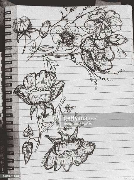 Pencil Drawing Of Flowers In Sketch Pad