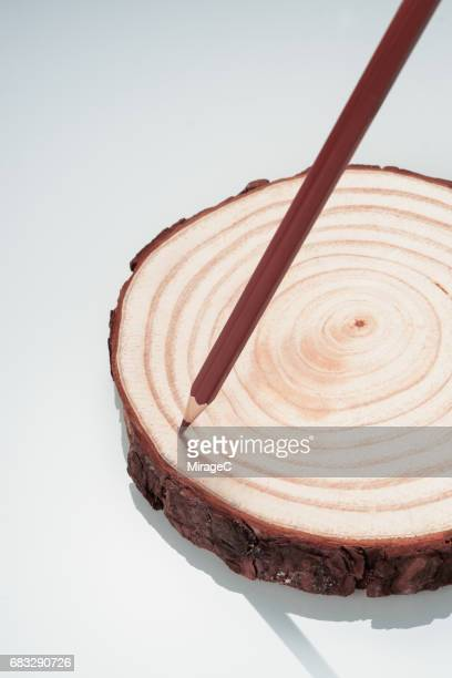 Pencil Drawing Tree Rings