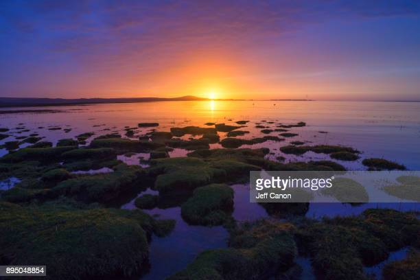 penclawdd - gower peninsula stock photos and pictures