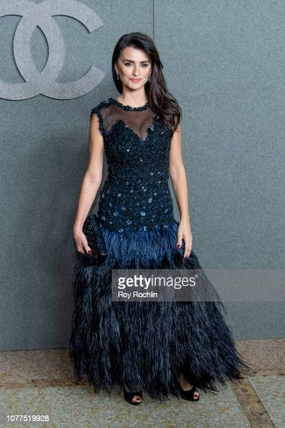 Penelope Cruz attends the Chanel Metiers D'Art 2018/19 Show at The Metropolitan Museum of Art on December 04 2018 in New York City