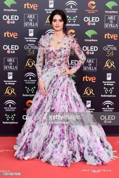 Penelope Cruz attends the Goya Cinema Awards 2020 during the 34th edition of the Goya Cinema Awards at Jose Maria Martin Carpena Sports Palace on...