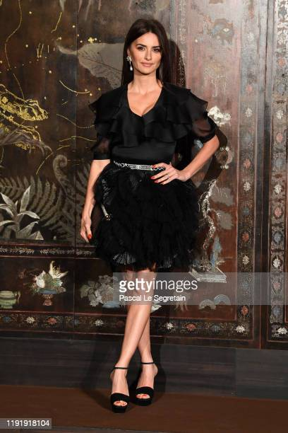 Penelope Cruz attends the photocall of the Chanel Metiers d'art 2019-2020 show at Le Grand Palais on December 04, 2019 in Paris, France.