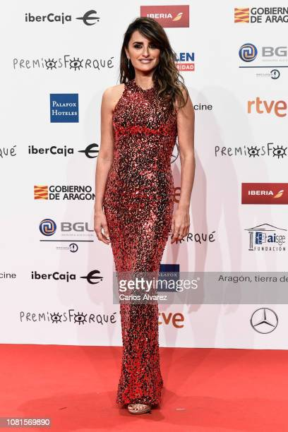 Penelope Cruz attends the red carpet during 'Jose Maria Forque Awards' 2019 at Palacio de Congresos on January 12 2019 in Zaragoza Spain
