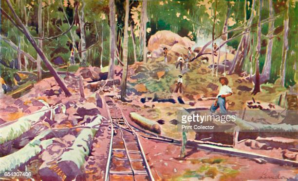 Penetrating the Amazonian Forest MadeiraMamorÔøΩ Railway 1914 From The Beautiful Rio De Janeiro by Alured Gray Bell [William Heinemann London 1914]...