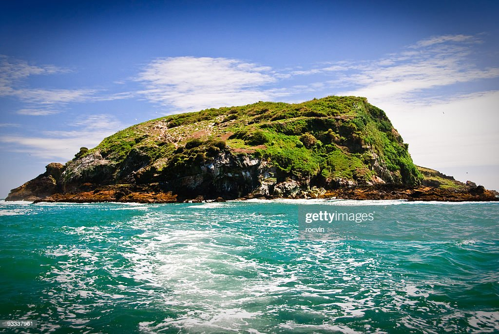 Penguin Island : Stock Photo