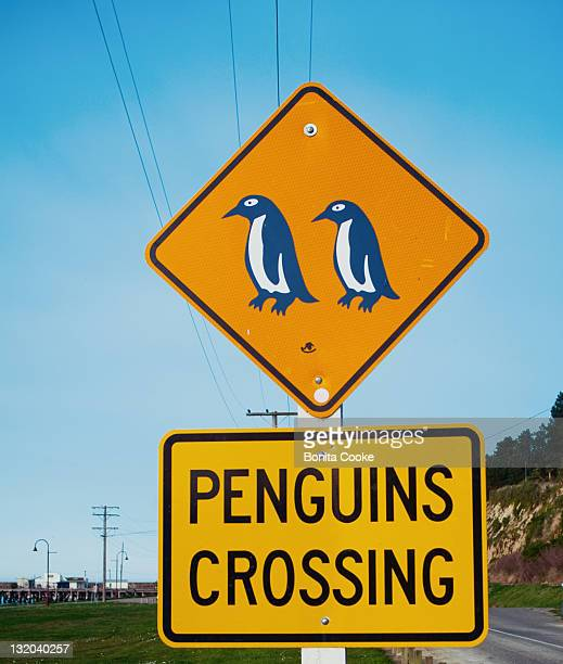 penguins crossing street sign - animal crossing stock pictures, royalty-free photos & images