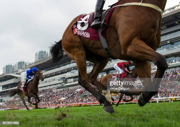 Peniaphobia finishing unplaced in Race 7 ChairmanÕs Sprint Prize on Champions Day at Sha Tin racecourse on April 29 2018 in Hong Kong Hong Kong