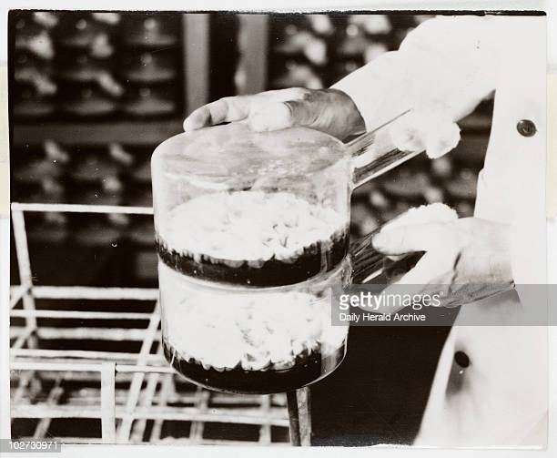 Penicillin culture flasks 1943 A photograph of penicillin growing in culture flasks taken by James Jarche for 'Illustrated' magazine As the...