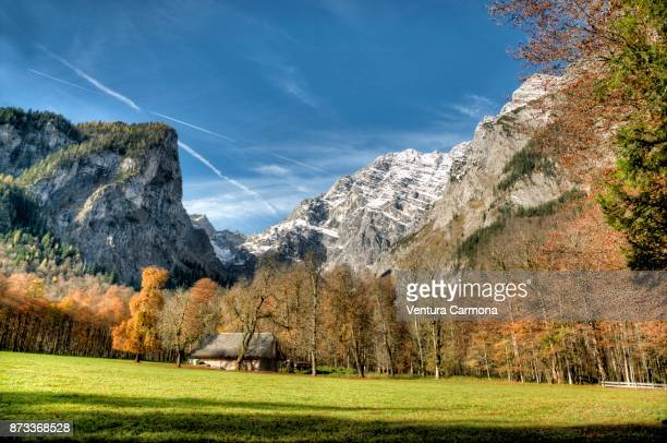 peninsula of hirschau in germany - berchtesgaden national park stock photos and pictures