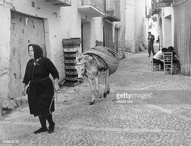 old woman with donkey