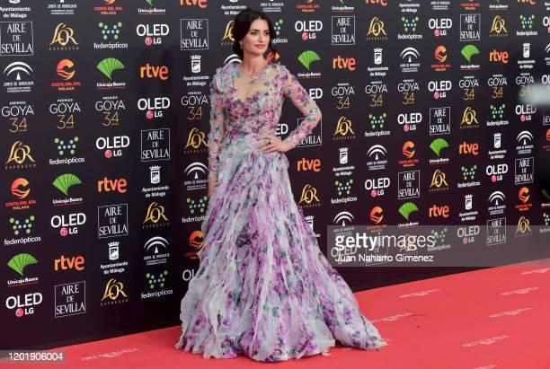 Penélope Cruz attends the Goya Cinema Awards 2020 during the 34th edition of the Goya Cinema Awards at Jose Maria Martin Carpena Sports palace on...
