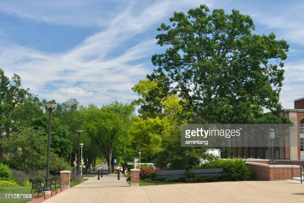 penn state campus - state college pennsylvania stock pictures, royalty-free photos & images