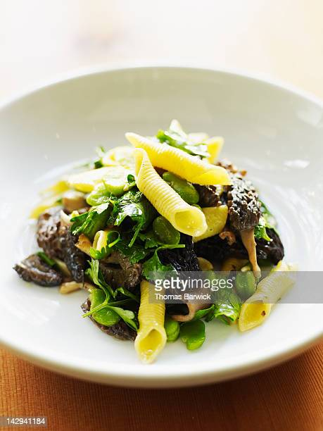 penne pasta sauteed with morels and mushrooms - morel mushroom stock pictures, royalty-free photos & images