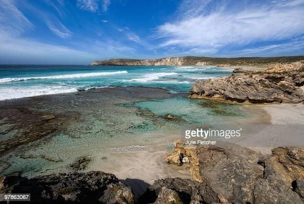 pennington bay kangaroo island sa - kangaroo island stock pictures, royalty-free photos & images