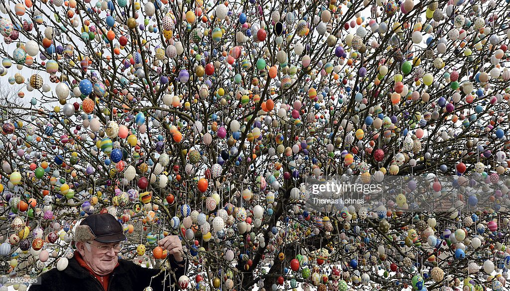 Pensioner Volker Kraft stands in front of his apple tree, which he and his family have decorated with 10.000 Easter eggs on March 24, 2013 in Saalfeld, Germany. The family started decorating an apple tree with painted hen's eggs in their garden in 1965 as amusement for child and grandchildren, now it is an attraction that draws thousands of visitors and tourists to the garden of the family.