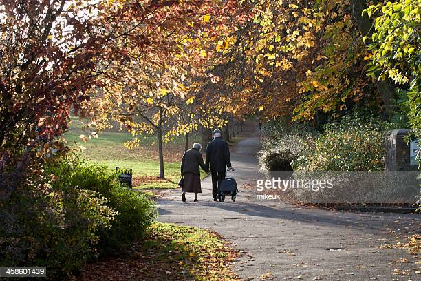 pensioners walking in an autumn park - harrogate stock pictures, royalty-free photos & images