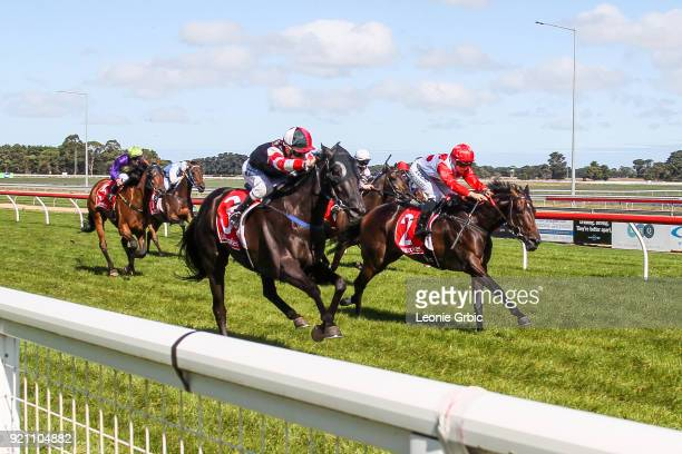 Penthouse Poet ridden by Harry Grace wins the Kwik Tip Bins Rising Stars Race BM64 Handicap at Sale Racecourse on February 20 2018 in Sale Australia