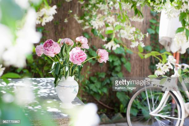 peonies in a vase on garden table - peonia foto e immagini stock