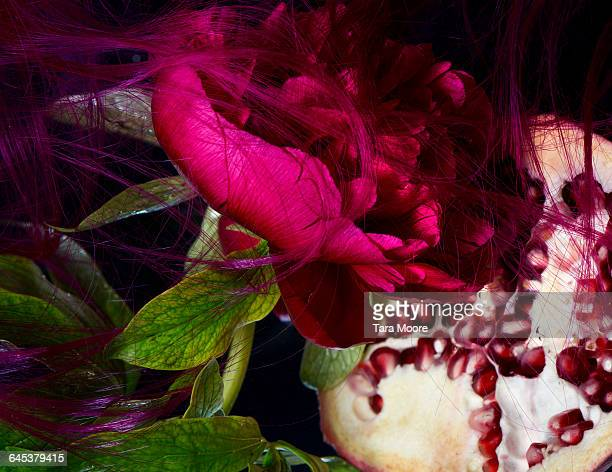 peony, pomegranate and hair in water