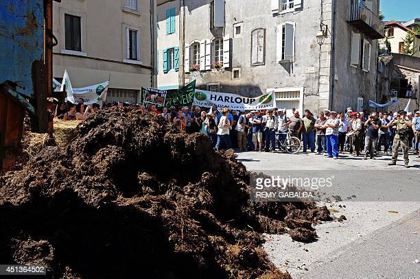 People and farmers spread manure and straw in front of the prefecture during a demonstration against the reintroduction of brown bears in the...